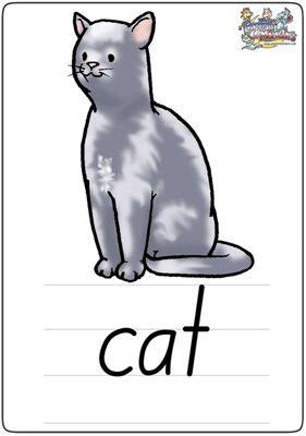 """英语学习卡片""""cat"""""""
