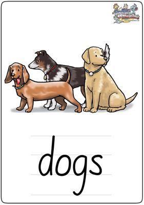 """英语学习卡片""""dogs"""""""