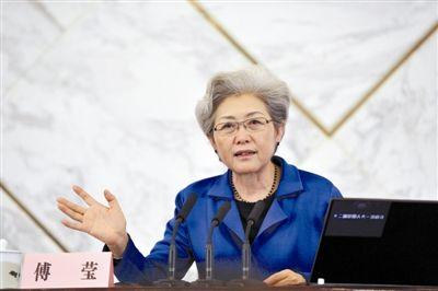 外交部副部长傅莹
