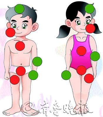 性教育图片,绿色的点是异性可以触碰的地方,红点则是不可触碰的。