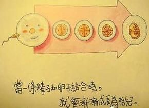 香港儿童的性教育教材可谓十分开放。从爸爸妈妈谈恋爱、互诉心声到结婚、性交、婴儿出生父母欢天喜地,整个过程毫无遮掩。