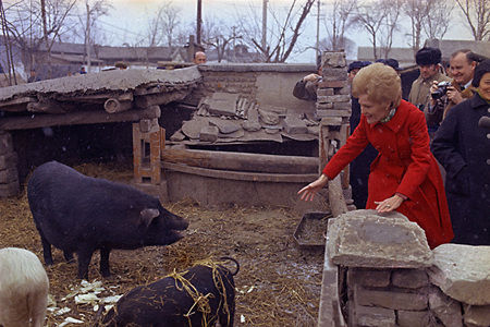 Pat Nixon, wife of former US President Richard Nixon, throws pieces of food to pigs in a sty at a Chinese commune in Beijing, Feb 23, 1972. 1972年2月23日,时任美国总统理查德・尼克松的妻子帕特在一个公社的猪圈里给猪投递食物。