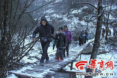1月29日清晨7时46分,镇巴县观音镇八角庙村。上学路上,家长带孩子们过由木棍搭建的桥 华商报记者 曾春 摄