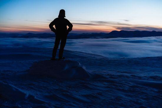 伫立在冰原上的探险者(网页截图)