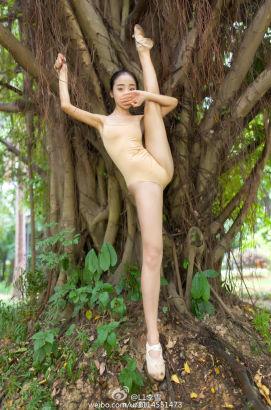大数据时代2015最火的十位校花分别是:广西艺术学院――李雪。照片中的她在丛林间大秀一字马,展现柔美身段,曾被赞最好身材。