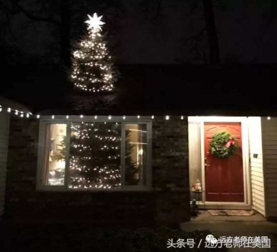 """""""破顶而出""""的圣诞树的晚间效果"""