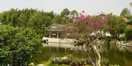 朱家花园的池塘和紫薇花