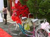 浪漫的双人自行车