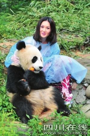 来雅明星与大熊猫亲密接触