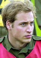 威廉王子凝望