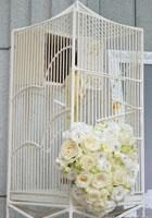 浪漫太阳鸟笼