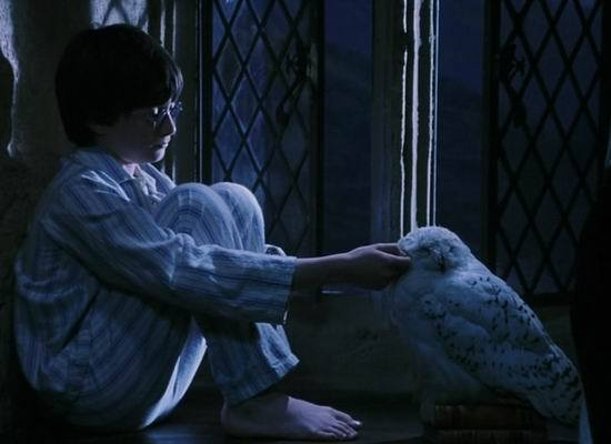 《哈利-波特》十周年回忆录之十大特殊配角(图)
