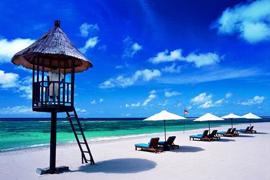 巴厘岛和苏拉威西岛