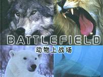 《动物上战场》