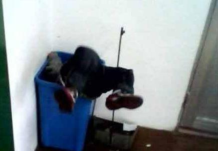 幼师把小朋友扔进垃圾桶