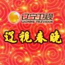 辽宁卫视春晚官方微博