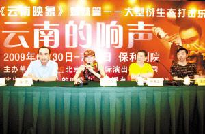 杨丽萍成立文化公司首度尝试独立商业运作(图)