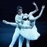 中央芭蕾舞《天鹅湖》
