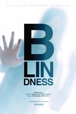 第61届戛纳电影节主竞赛单元-《盲流感》(巴西)