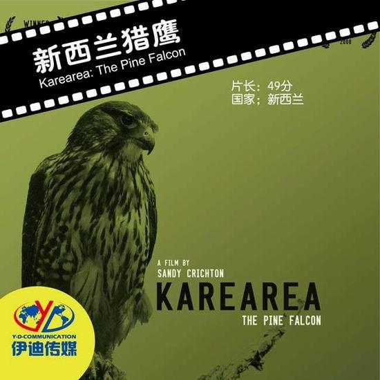 动物与自然电影周展映电影:《新西兰猎鹰》