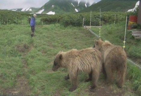 动物与自然电影周展映电影:《伊甸园的边界》
