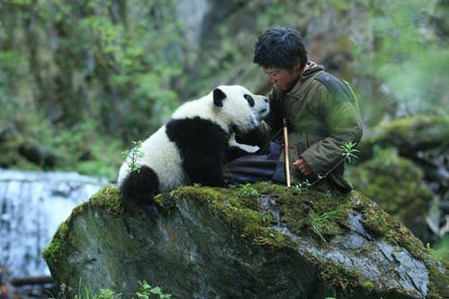 熊猫今年吃香迪斯尼现炒现卖《熊猫回家路》