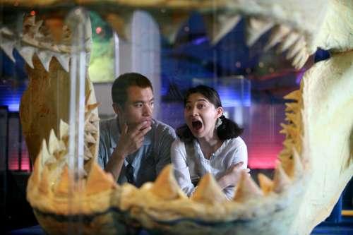 耿乐鲨鱼嘴里觅恋爱《桃花运》正在进行(图)