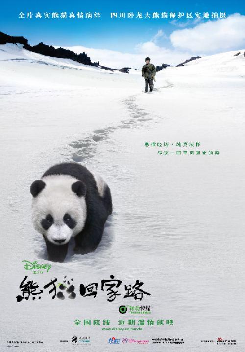 《熊猫回家路》拍摄背景与花絮(组图)