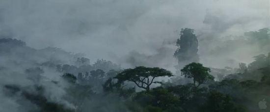 潘多拉星球上景色,有一丝水墨画的味道