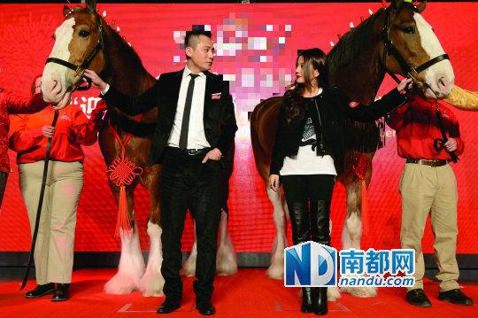 刘烨、赵薇结伴牵马拜年,并透露工作计划。