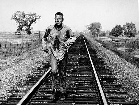 保罗-纽曼人生的五个阶段:军旅生涯