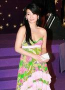 2006香港金像奖红地毯:秦海璐