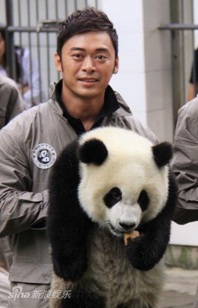 """更爱心认养了一只可爱的大熊猫,成功升级为""""熊猫爸爸""""."""