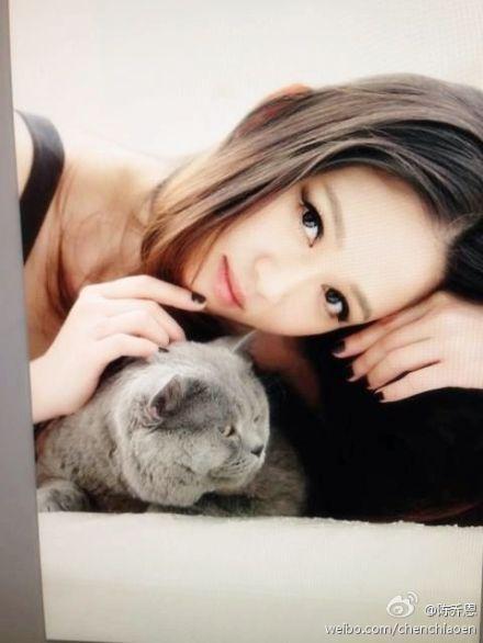 陈乔恩抱爱猫魅惑出镜