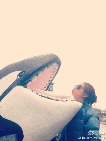亲吻虎鲸雕像
