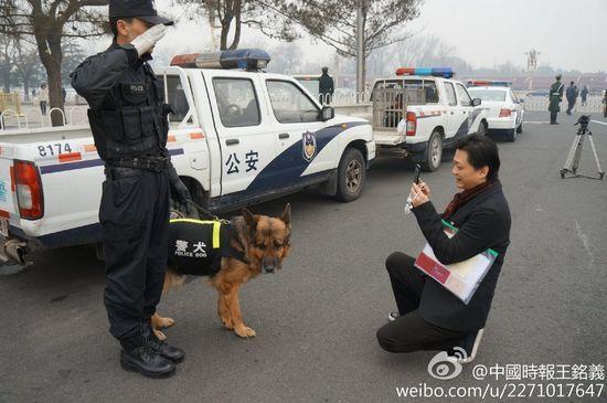 崔永元开两会蹲路边拍警犬