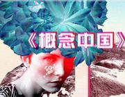派格太合《概念中国》栏目