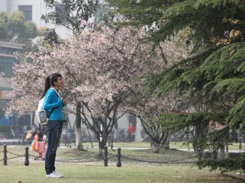 《女主播》演绎菜鸟成长史朱丹杨谨华重返校园