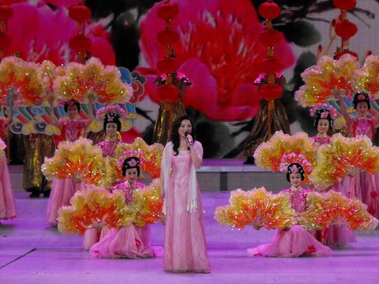 图文:09年央视春节晚会--越剧演员萧雅
