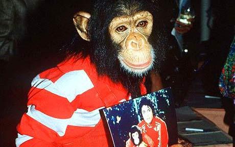 迈克尔-杰克逊慈善关键词:动物救治