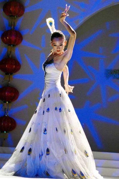 杨丽萍:舞剧《孔雀》后退出舞台