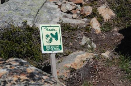 科罗拉多州洛基山国家公园内的禁令牌