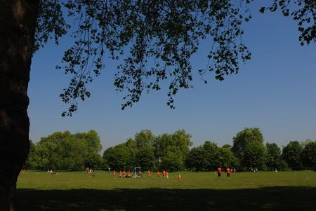 伦敦海德公园内的踢球少年