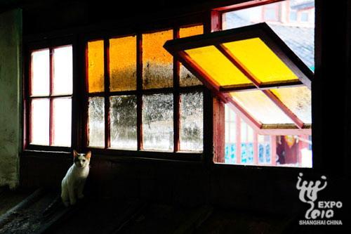 上海企业联合馆公布视觉作品征集活动9月最佳征集照[组图]