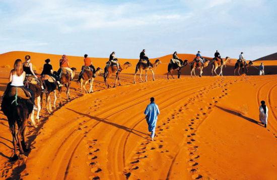 骑着骆驼奔赴营地
