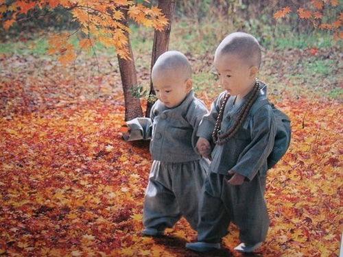 佛教历史上第一个出家的儿童-心情茶吧-CG