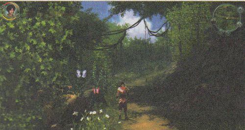 图2 猿啼峰,清风拂面树影摇曳彩蝶飞舞,真令人心旷神怡