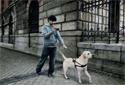 PSP掌机:导盲犬