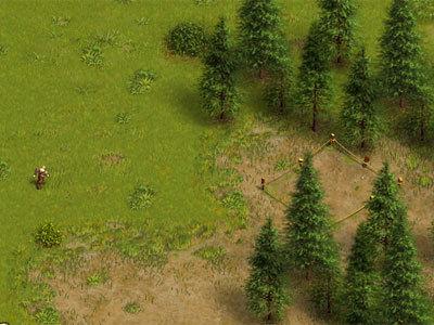 木材生产线建构的过程