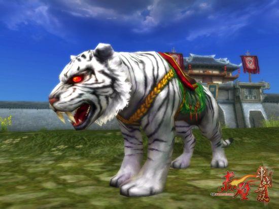 霸气冲天的白虎